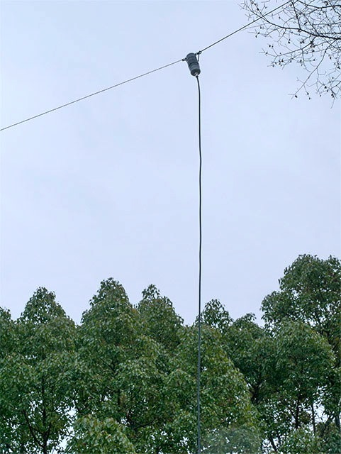 JA3HKR 7MHz用 EFHW アンテナ