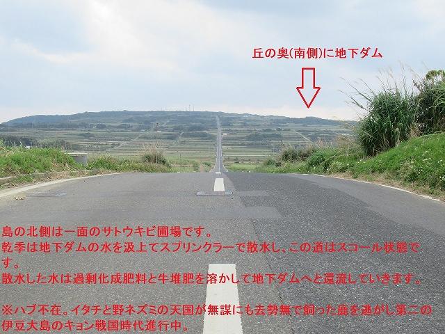 喜界島地勢