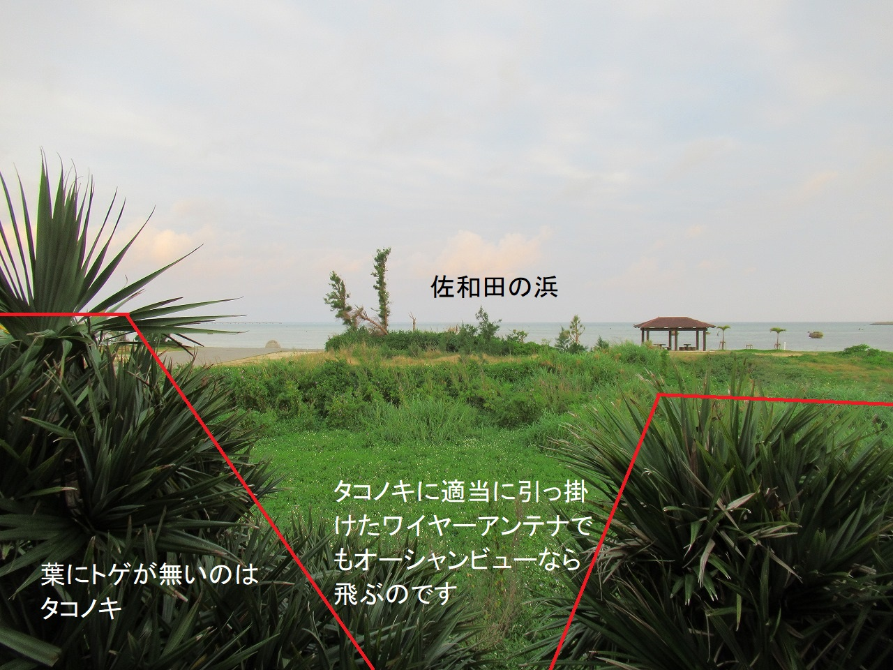 伊良部島オーシャンビュー